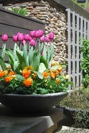 garden ideas perennial bulbs to plant in best bulbs to