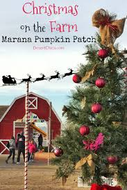 Pumpkin Patch Farms In Phoenix Az by Marana Christmas On The Farm Desert Chica