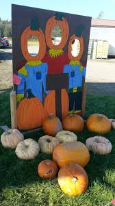 Pumpkin Farms In Southern Maryland by Pumpkin Time Pumpkin Patches And Corn Mazes Anacortes