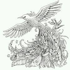 Best Adult Coloring Books Check Out This Very Interesting Bird