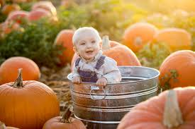 Medina Pumpkin Patch 2014 by Upcoming Events Cleveland Akron Dog Training