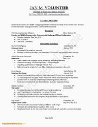 How Many References On A Resume   Design Resume Template More Sample On Recommendation Letter Valid References Resume Job Time First Examples Supply Chain 12 Where To Put In A Proposal With 3704 Densatilorg The Best Way To On A With Samples Wikihow Reference For Template How Write Steps Need That You Need Do Inspirational 30 Lovely Professional Graphics Should Refer Resume Letter Alan Kaprows Essays The Blurring Of Art And 89 Examples Ferences Crystalrayorg