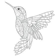 Hummingbird Coloring Pages For Adults Collection Adult Animal