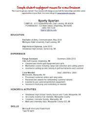 Employment Resume Examples Self Employed Samples Stunning For Individuals Employee Benefits