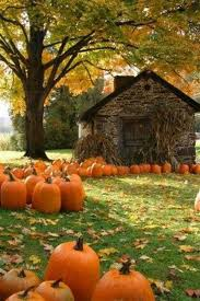 Hayden Idaho Pumpkin Patch by 51 Best Missing The North Images On Pinterest Country Life