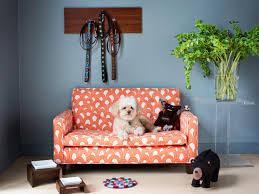 Pampered Pets Bed And Biscuit by How To Clean A Dog Bed Diy