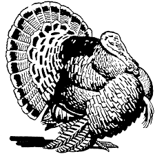 Turkey Coloring Pages For Adults