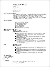 Contemporary Truck Driver Resume
