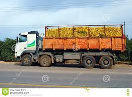 Truck Load Of Oranges Stock Image. Image Of Loading ... How Much Stone Is In A Tri Axle Dump Truck Load Youtube Less Than Truckload Ltl Nationwide Carriers Shipping Litter By The Spreader Truck Load Pierce Service Filelogging With Of Saw Logsjpg Wikimedia Commons Than Companies Freight Transport Of Barrels Stock Image I3480094 At Sale For Post New Braunfels Feed Supply How To 47000 Bent Structural Steel Albina Forestry Equipment Timber Logging Vector Logs Hearthcom Forums Home Tsd Logistics Bulk Services Broker Filetruckload Palletsjpg