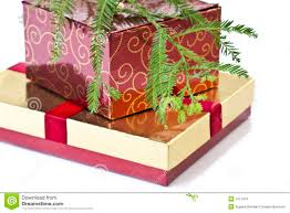 Christmas Tree Storage Container by Christmas Tree Boxes Interiors Design