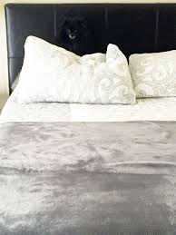 Can you spot the hidden animal in this picture of a bed AOL News