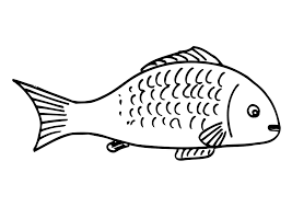Easy Fish Coloring Pages For Kids