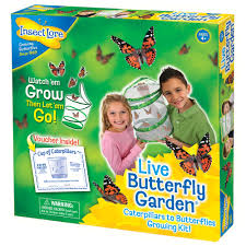 Live Butterfly Garden Kit Children s Grow Your Own Butterfly