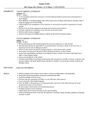 Download Valet Parking Attendant Resume Sample As Image File