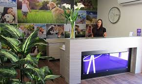 Pet Funeral Home opens on the Gold Coast