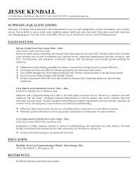 Examples Of A Summary On Resume With
