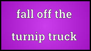 Fall Off The Turnip Truck Meaning - YouTube Dropping Like Flies People Are Quitting Or Falling Behind Because Ligcoinn Turnip Truck Productions Pinterest Donald Rumsfeld Quote I Suppose The Implication Of That Is Who Fell Off Just Fell Turnip Truck Visual Pun Pating By Richard Hall Hornswoggled Welcome To Gerald Missourah Town Did Just The Right Pig Buying A Small Business Othalafehus Blog 21 Superboats Still Being Made Page 2 Offshoreonlycom Msionaccompshedmygijoeflagrichardhastilllifejpgv1475792401