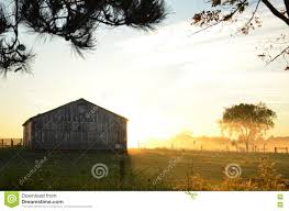 Sunrise Behind A Barn On A Foggy Morning Stock Photo - Image: 79809047 Tammie Dickersons Arstic Journey September 2014 The 7msn Ranch Breakfast From Behind The Barn John Elkington Caroline From 0 To 60 In Well Years Sunrise Behind A Barn On Foggy Morning Stock Photo Image 79809047 Red Trees 88308572 Untitled Document Our Restoration Preserving History Through Barnwood Rebuild Tornado Forming Old Royalty Free Images Sketch For By Hbert Sidney Palmer At Consignorca Shed Olper And Fustein Innervals Vals Valley Towering Sunflower Growing Beside Bigstock