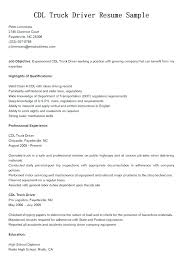 Sample Resume Of Professional Driver With Skills And Abilities In For Truck