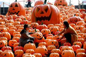 Spirit Halloween Northridge Hours by Spirit Halloween Omaha