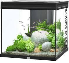 aquarium elegance noir 95 litres zone aquatique