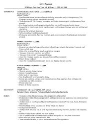 Download Mortgage Loan Closer Resume Sample As Image File