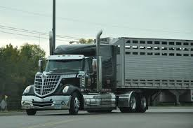 Trucking | Livestock Haulers | Pinterest | Livestock Trucking The Worlds Best Photos Of 389 And Livestock Flickr Hive Mind About Metzger Agricultural Exemptions Instated For Regulations Pork Firms Worried Electronic Logging Device Could Hurt Henderson Jobs Otr Long Haul Truck Drivers West Land Cattle Hauler Jessica Lorees 2003 Pete 379 Livestockcattle Haulers Sale Llc Kenworth T800 With 4 Axle Tra Truck Spill Cleaned Up A Lot Help Krvn Radio Australian Livestock Rural Transporters Association