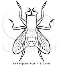 Clipart of a Black and White House Fly Royalty Free Vector