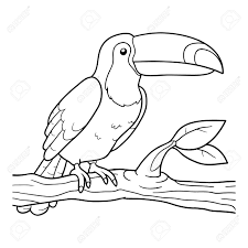 Coloriage Toucan Duathlonwacom