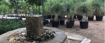 100 Angelos Landscape Scherz Co San Angelo TX Landscaping Company
