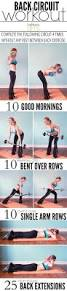 Reverse Pec Deck Flyes With Dumbbells by Best 25 Back Row Ideas On Pinterest Auto Organizer Diy Bags