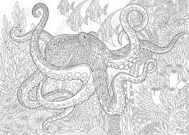 141 best Underwater Coloring Pages images on Pinterest