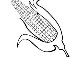 Corn On The Cob Coloring Page Colouring Pages Inside
