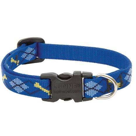 Lupine Dapper Dog Adjustable Dog Collar - 8-12""