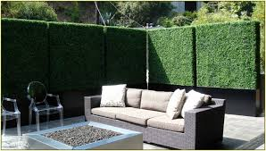 Patio Privacy Home Design Ideas and