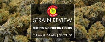 Cherry Northern Lights Strain Review