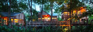 100 Tree House Studio Wood Delightful Treehouse Residence Weaves Through A Forest In Thailand
