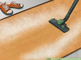 Dog Urine Wood Floors Get Smell Out by 3 Ways To Get Dog Smell Out Of The Carpet Wikihow