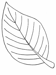 Leaf Coloring Pages Tryonshorts Line