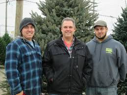 Menards Christmas Trees Recalled by Real Christmas Trees Still Popular With Those Who Honor Tradition