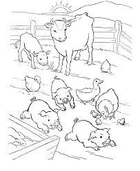 Barn Yard Pigs Coloring Page Free Printable Farm Animals Sheets