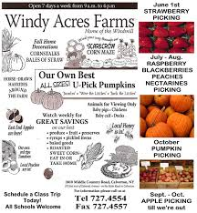 Pumpkin Picking Corn Maze Long Island Ny by Windy Acres Farms 3810 Middle Country Road Calverton Ny