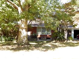 Halloween City Knoxville Tn by New Listings Coming Soon In Knoxville Tn U0026 Surrounding Areas