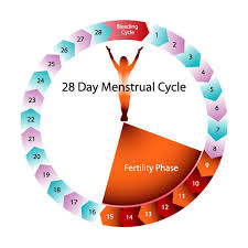 shedding uterine lining before period safe days after menstrual period things you didn t