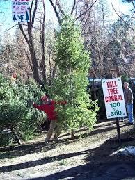 15 Foot Christmas Tree Walmart
