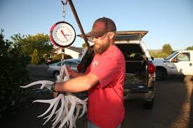 Searching For Shed: On The Hunt For Antlers In Arizona | KJZZ Car Rear View Mirror Decorations Country Girl Truck Revolutionary Raxx Dashboard Skull Deer Skulls Holiday Lighted Antlers Pep Boys Youtube 12v 50w Nice Price 115db Tone Wehicle Boat Motor Motorcycle Truck 155196 Accsories At Sportsmans Guide Christmas Reindeer For Suv Van And Rudolph Red Red Tree My Drawing Instant Clip Art Digital Whitetail Antler Shed For Sale 16206 The Taxidermy Store Worlds Best Photos Of Antlers Flickr Hive Mind Costume Decorating Kit Capsule 15 Artifacts Gadgets Gizmos Capsule Brand