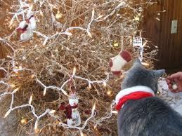 Tumbleweed Christmas Trees by The Herbangardener Travel