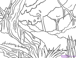 Coloring Page Forest Nature 38