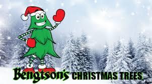 Elgin Il Christmas Tree Farm by Visit Bengtson U0027s Christmas Tree Farm In Peotone Ilinois Save 5 00