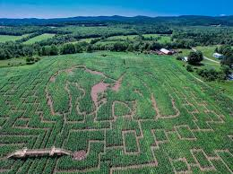 Portland Maine Pumpkin Patch by Best Corn Mazes In New England New England Today